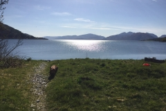 Loch Linnhe morning walk